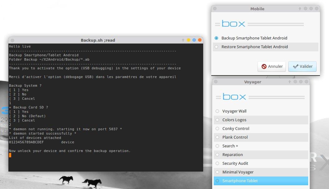 backupX2